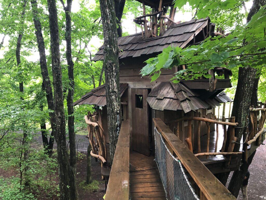 北軽井沢スウィートグラス おしぎっぱの森 ツリーハウス