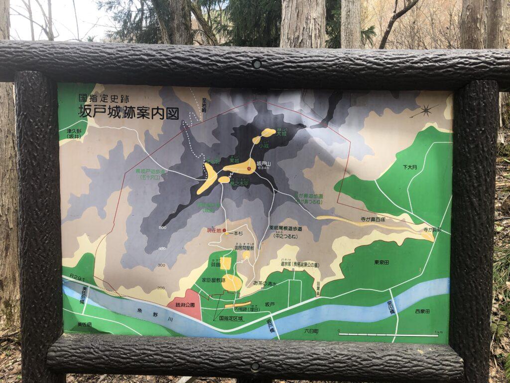 新潟県南魚沼市 坂戸山 かたくり群生地 登山 一本杉 分岐 マップ 案内図 城坂コース