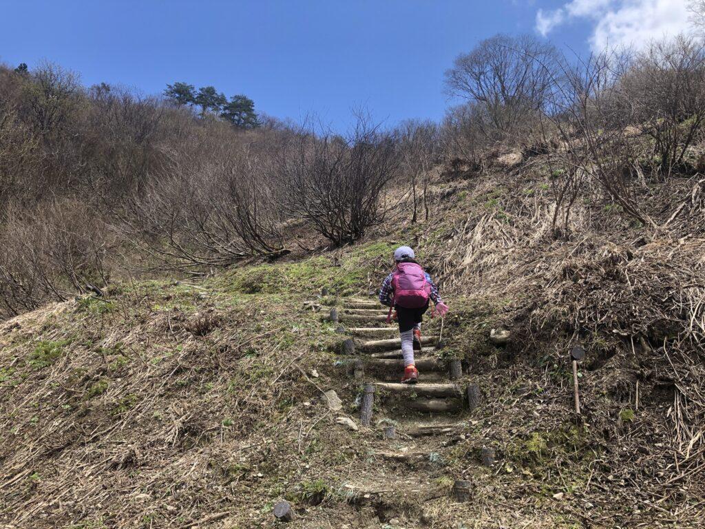 新潟県南魚沼市 坂戸山 かたくり群生地 登山 城坂コース