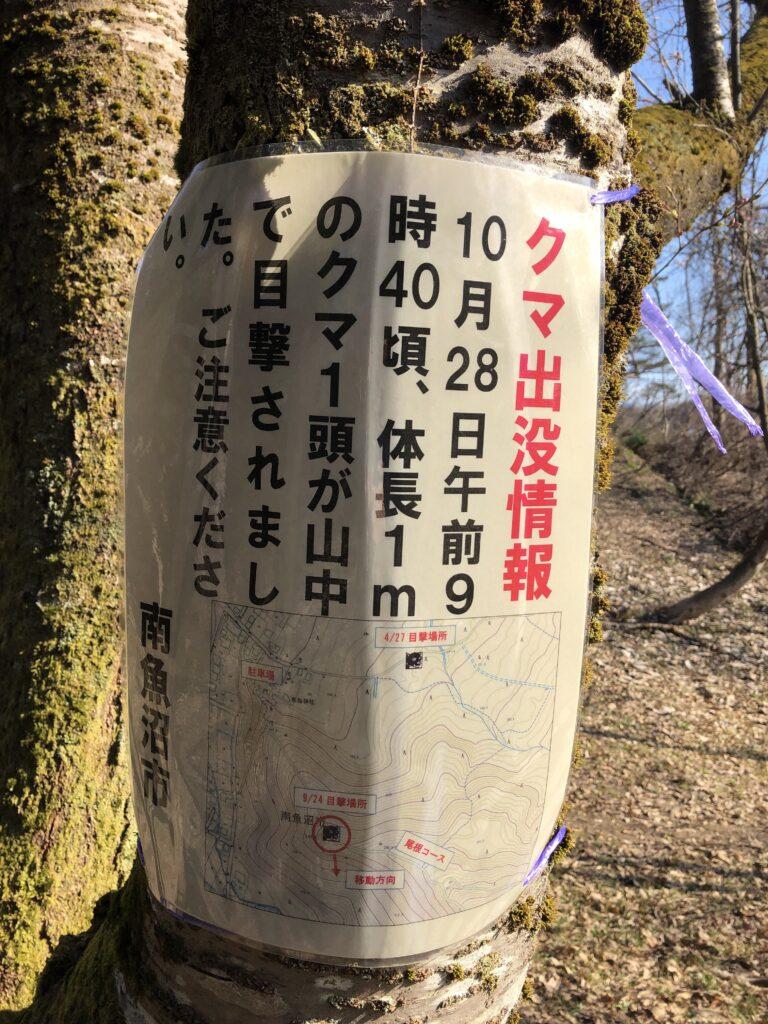 新潟県南魚沼市 坂戸山 かたくり群生地 登山 クマ目撃情報