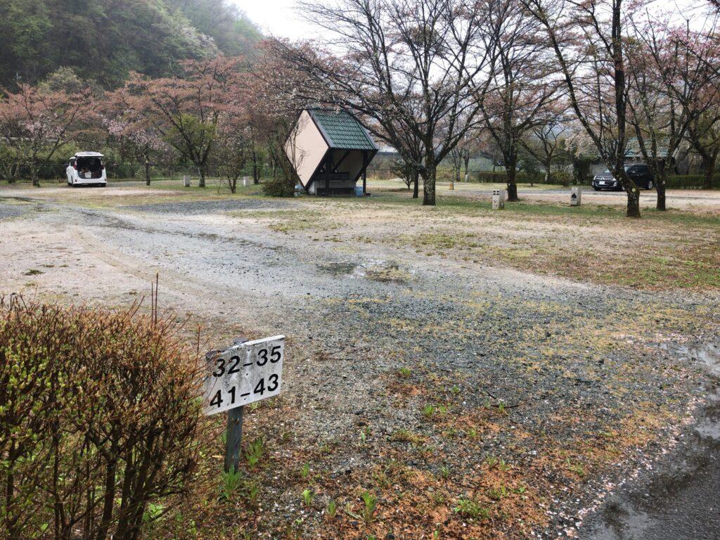 ファミリーオートキャンプ場そうり 沢入 日本オートキャンプ協会認定 お花見キャンプ  オートキャンプサイト