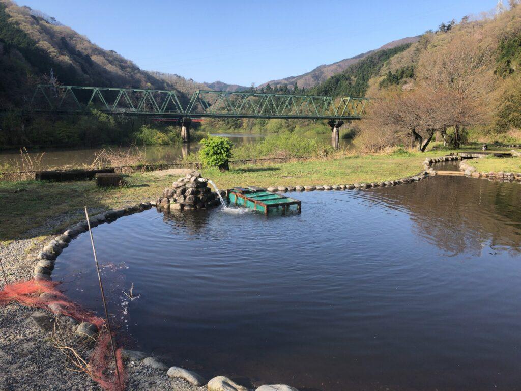 ファミリーオートキャンプ場そうり 沢入 日本オートキャンプ協会認定 お花見キャンプ 親水池 マス釣り