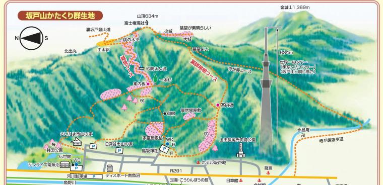 新潟県南魚沼市 坂戸山 かたくり群生地 登山マップ